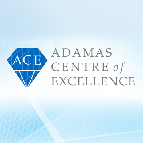 The ADAMAS Centre of Excellence (ACE)