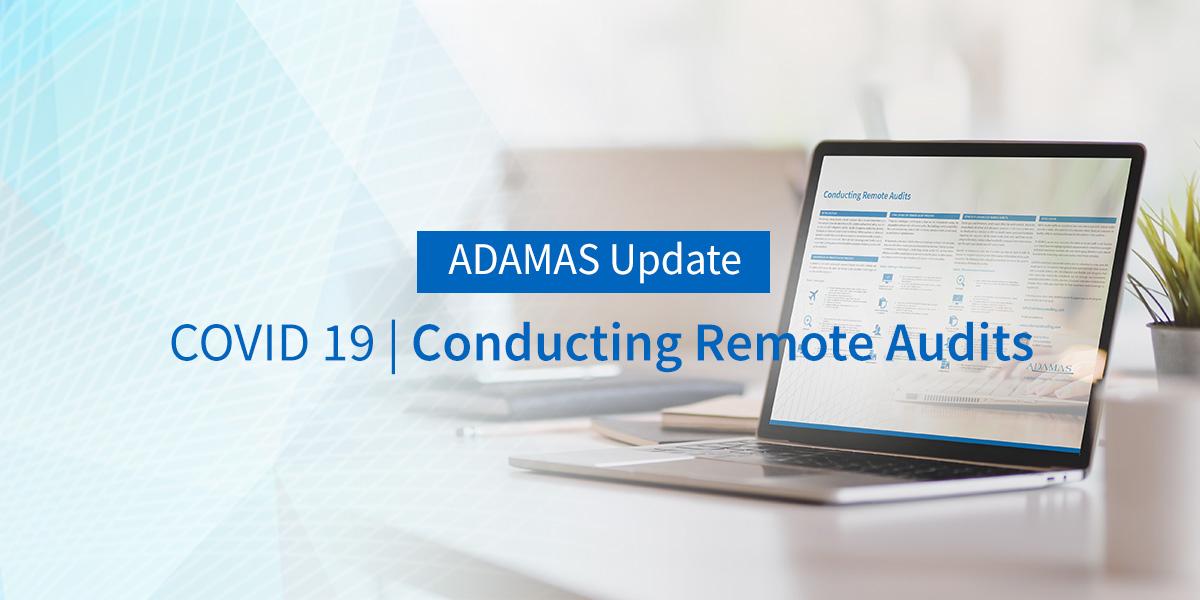 COVID-19   Conducting Remote Audits
